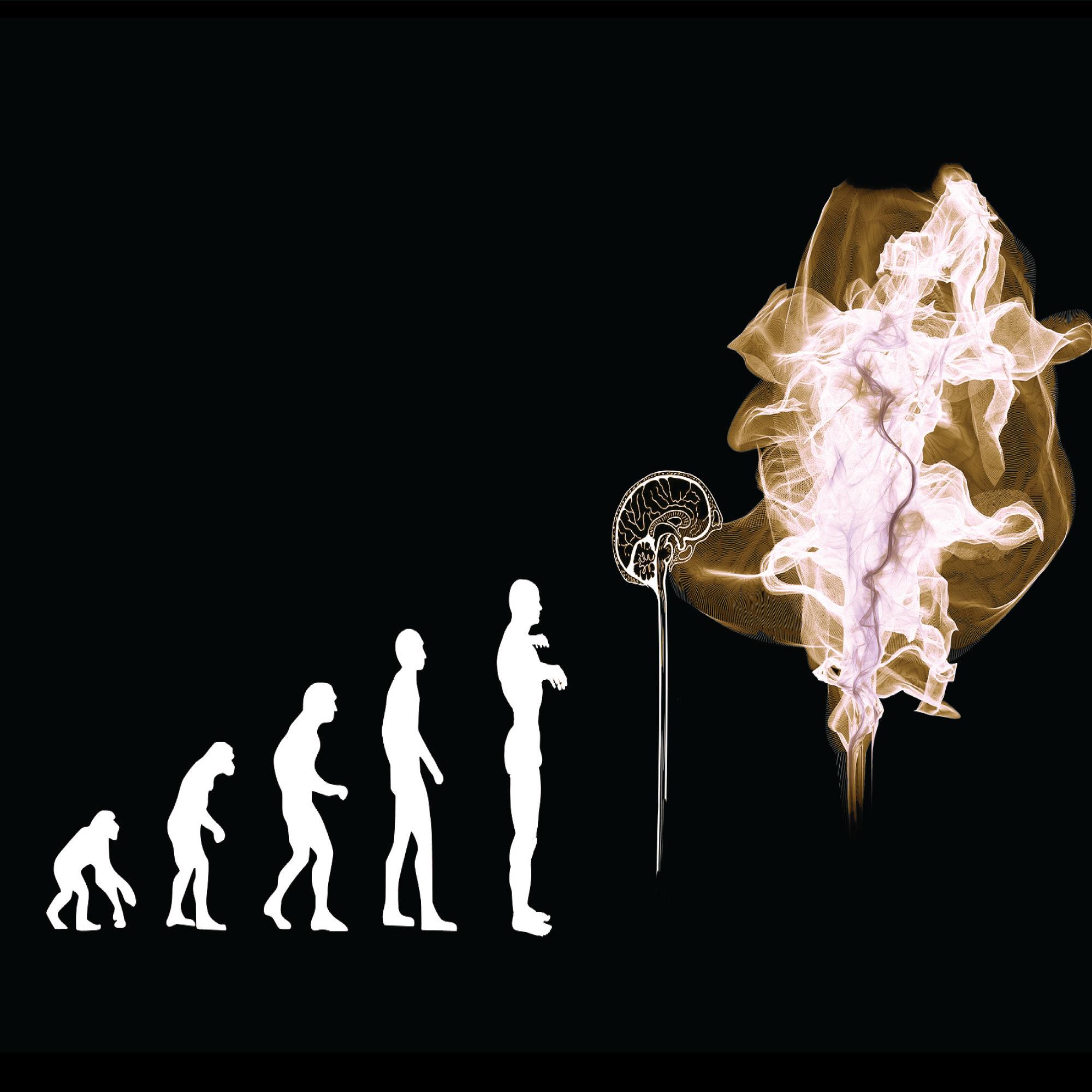 Evolution von HR