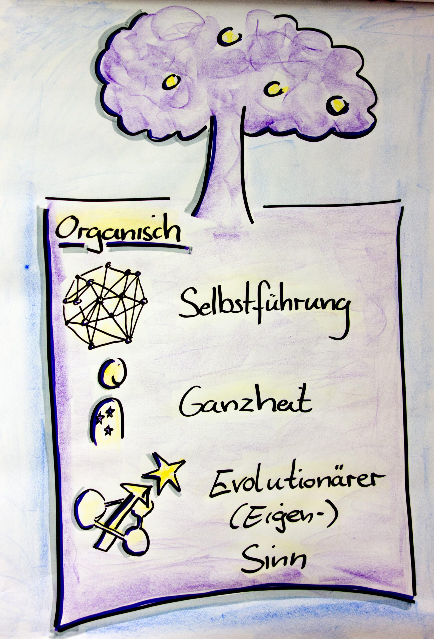 Die evolutionäre Organisationsform
